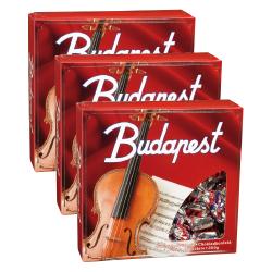 Budapest-uklaakonvehteja